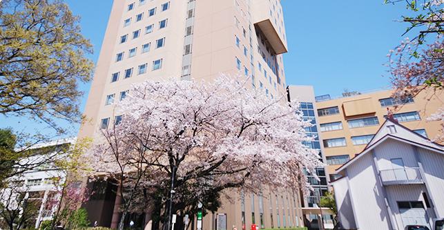 「日本女子大学 目白」の画像検索結果