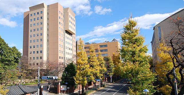 「日本女子大学」の画像検索結果